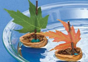кораблик из ореховой скорлупы с кленовым листочком