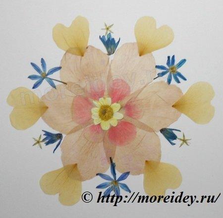 Мандалы из природных материалов, мандалы из засушенных растений, цветочные мандалы