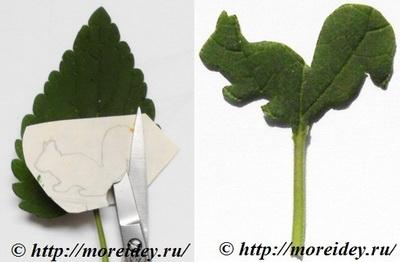 Штампы из листьев, отпечатки листьями растений, необычные штампы из листьев