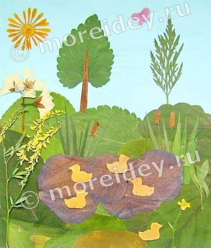 Поделки из засушенных растений