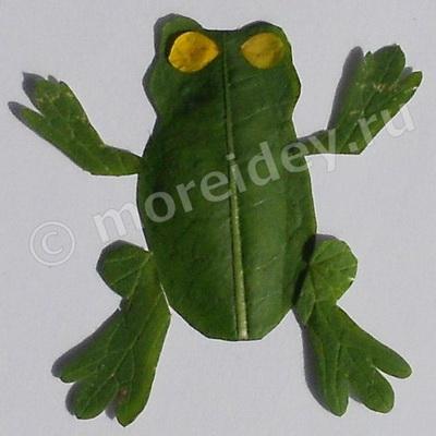 Аппликация из листьев растений. Лягушка