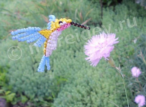 Колибри из бисера со схемой
