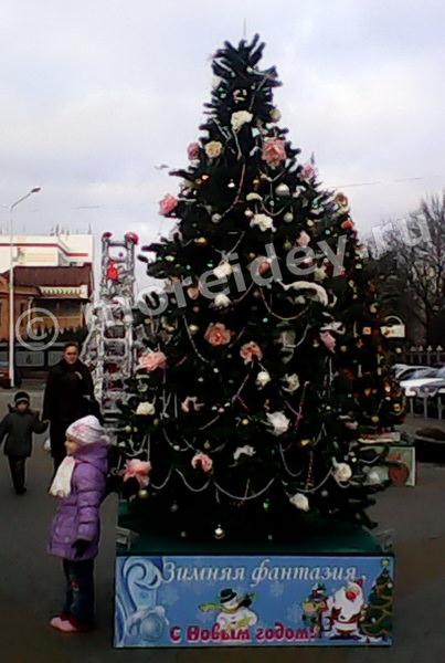 Уличные елки с необычными украшениями