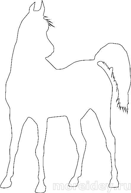 Контуры лошадей