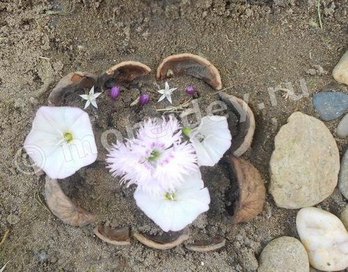 Мини-клумба для садовой композиции
