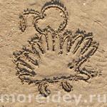 Животные из ладошек — рисунки на песке