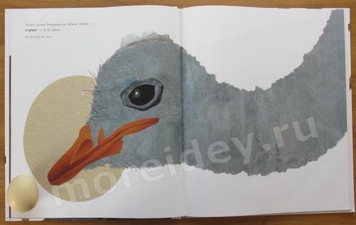 Страус, страусиное и куриное яйцо размеры
