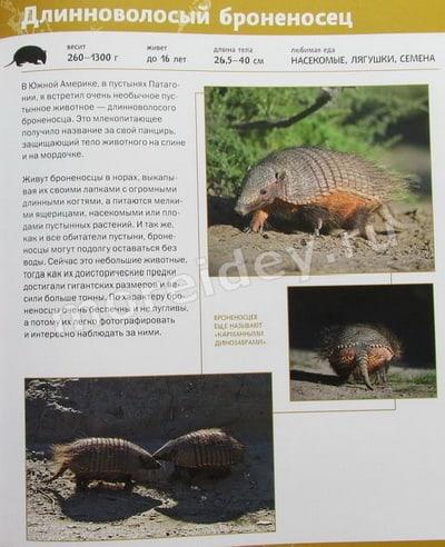 Валерий Малеев Занимательная зоогеография