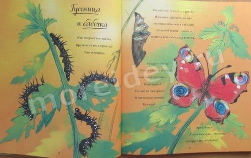 Никола Девис Большая книга природы