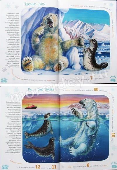 книги про животных для детей