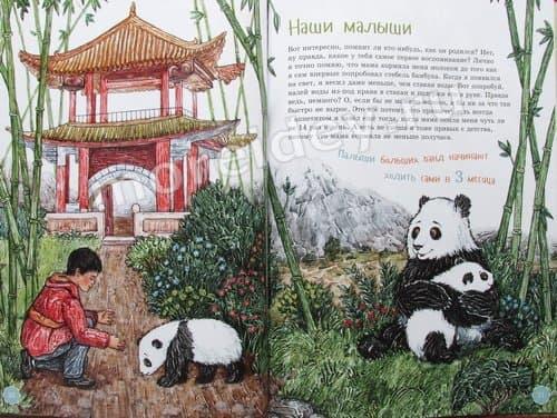 Книга я большая панда