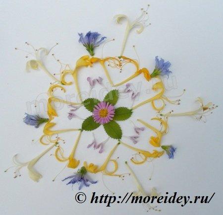 Мандалы из природных материалов, цветочные мандалы