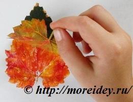 Штампы из листьев для детского творчества
