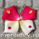 Лэнд-арт - поделки из лепестков роз