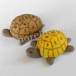 Поделки из ореховой скорлупы: черепахи (морская и наземные)