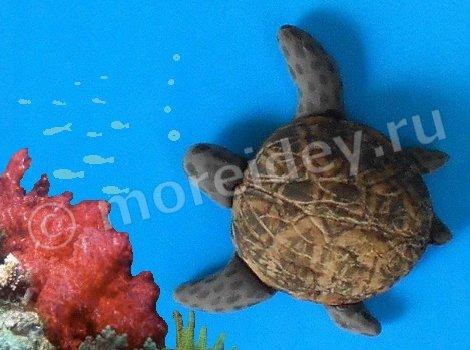 поделка из скорлупы ореха - морская черепаха