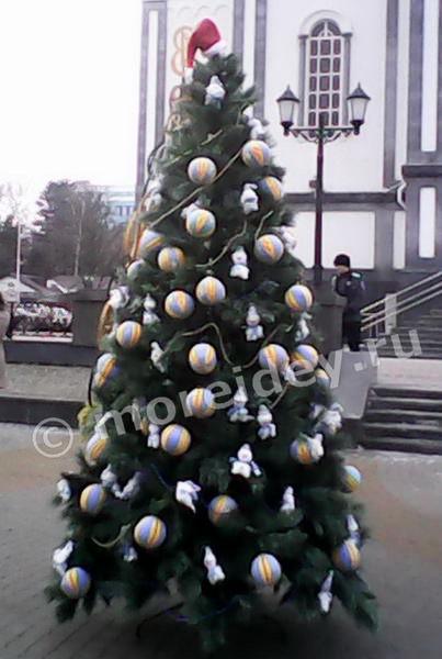 Уличные елки