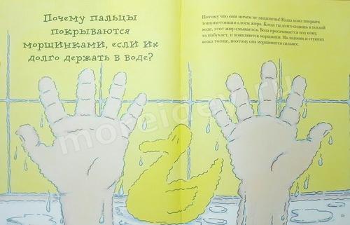 """Кэтрин Рипли книга """"Почему?"""": Почему пальцы в воде становятся морщинистыми"""