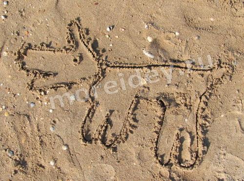 Рисунки ладошками на песке: собачка