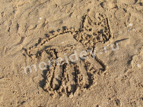 Рисунки ладошками на песке: кошка