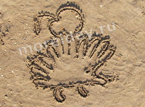 Рисунки ладошками на песке: ёжик с яблоком