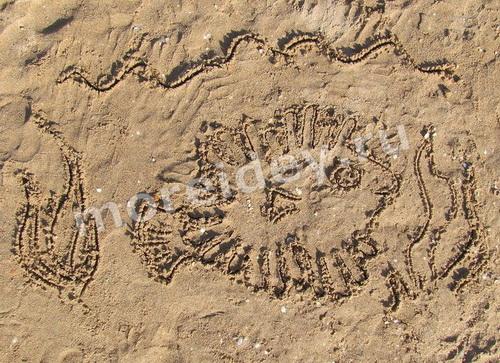 Рисунки ладошками на песке: рыбка