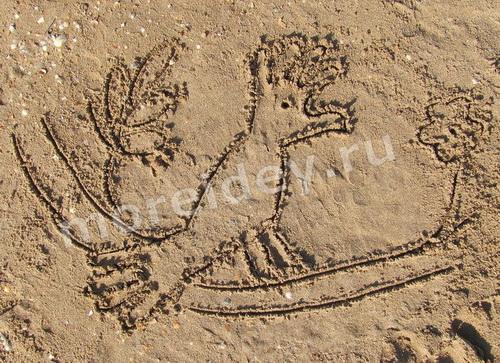 Рисунки ладошками на песке: попугай
