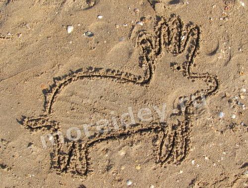 летние игры с песком