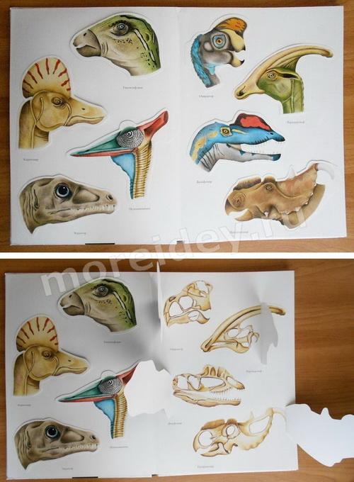 Дивнозары - страничка из книги о динозаврах с черепами динозавров