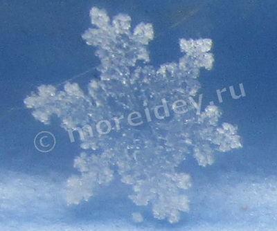 Настоящие снежинки. Фото