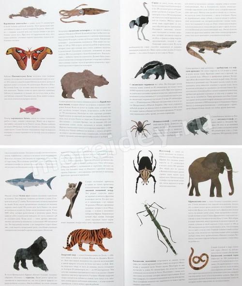 Энциклопедии о животных для самых маленьких детей