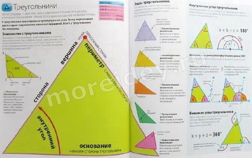 Справочник по математике: треугольник, виды треугольников