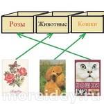 Задачи для детей на логику: ответы и решения
