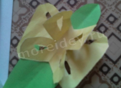 поделка симметричное вырезание бабочка из бумаги