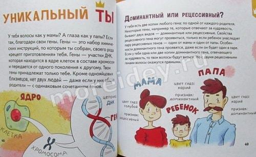генетика для детей