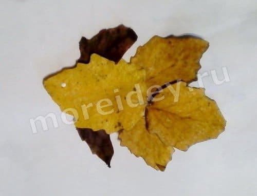 аппликация из листьев рыбка