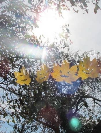 идеи для хэллоуина своими руками