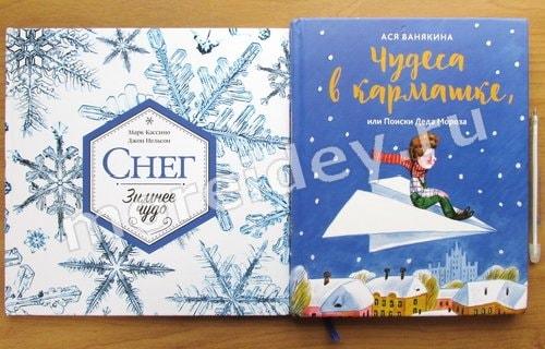 Зимние и новогодние детские книги