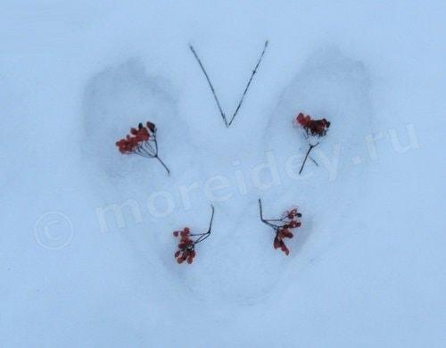игры детей со снегом