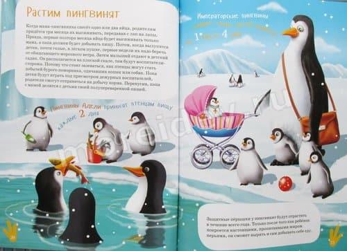 Книга я пингвин