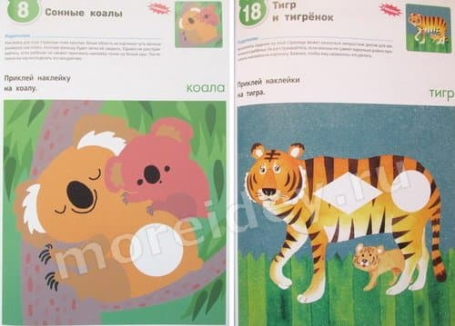 Тетрадь кумон в зоопарке